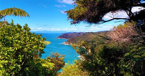 Takaka Is Your Gateway To New Zealand's Best Natural