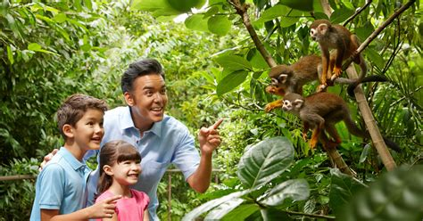 Singapore Zoo Entry E-Ticket and Tram Ride