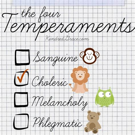An Overview of the Four Temperaments - Kindred Grace