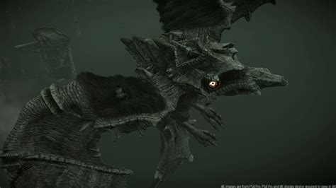 Shadow of the Colossus : Game Over Online