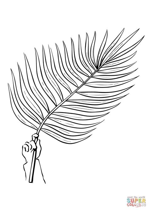 Palm Tree Branch coloring page | Free Printable Coloring Pages